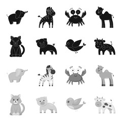An unrealistic black,monochrome animal icons in set collection for design. Toy animals vector symbol stock web illustration.