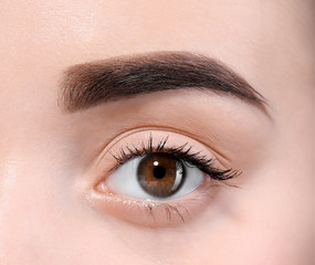 Beautiful woman with perfect eyebrows on light background, closeup
