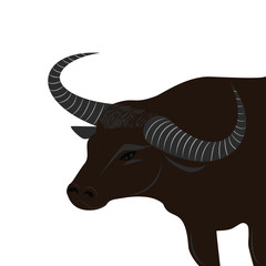 Asian buffalo with long horns turned back - isolated on white background - vector art illustration.