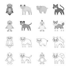 Entertainment, farm, pets and other web icon in outline,monochrome style. Eggs, toy, recreation icons in set collection.