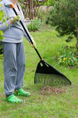 Garden cleaning. Raking dry grass in the garden.