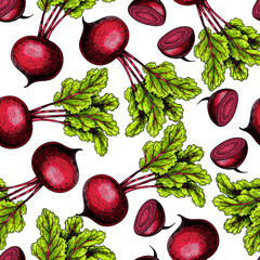 Vector hand drawn seamless pattern of beetroot whole and sliced with haulm. Colored illustration. Farm vegetables. Engraved art. Organic sketched objects. Restaurant, menu, grocery, market store.
