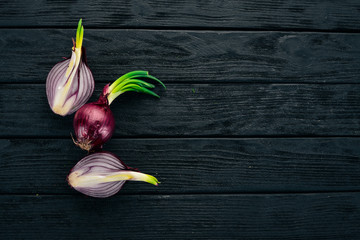 Purple Onion. On a black wooden background. Healthy food. Top view. Copy space.