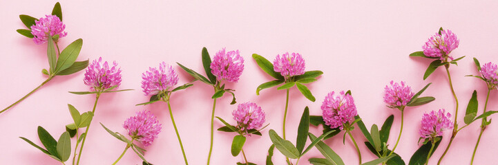Flower pattern of wildflowers. Composition of flowers and plants. Top view. Floral abstract background. Pink flowers on a pink background.