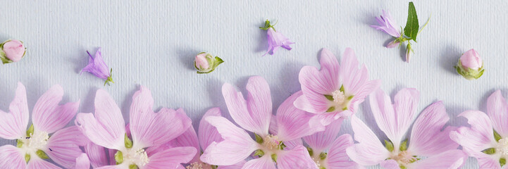Fototapete - Flower pattern of wildflowers. Composition of flowers. Top view. Floral abstract background. Small white flowers on a blue paper background. The concept of summer, spring, Mother's Day, March 8.