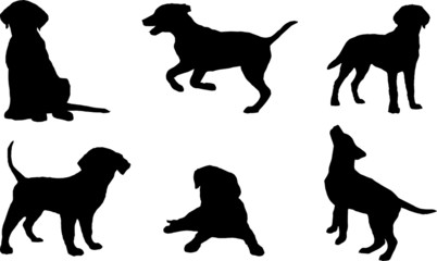 Vector silhouettes of puppies.