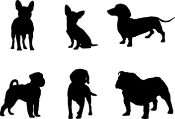 Vector silhouettes of dogs. Set of vector illustrations.