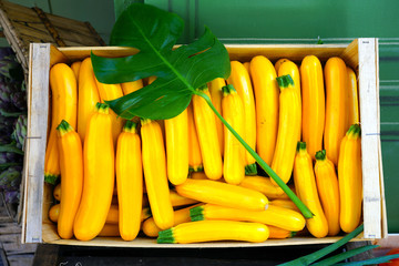Crate of yellow zucchini summer squash at a French farmers market