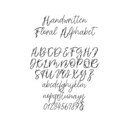 Calligraphy Alphabet. Exclusive Floral Letters. Decorative handwritten brush font for Wedding Monogram, Logo, Invitation