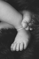 Adorably Precious Innocent Newborn Baby Boy Infant Sleeping on Blanket