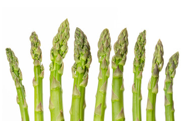 Fresh green asparagus tips in a row. Sparrow grass. Cultivated Asparagus officinalis. Spring vegetable with thick stems and closed buds. Food photo, close up, from above, on white background.