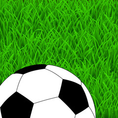 Soccer ball on the green grass. Top view
