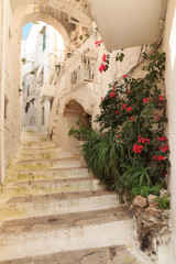 """Italy, SE Italy, Ostuni. City streets. Old town. The """"White City.""""Arches staircase. Flower covered."""