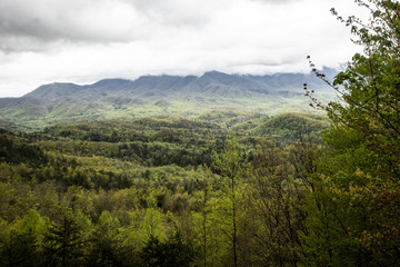 The Great Smoky Mountains landscape in spring.