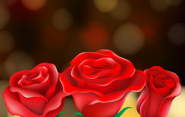 Roses Flower on Nature Background