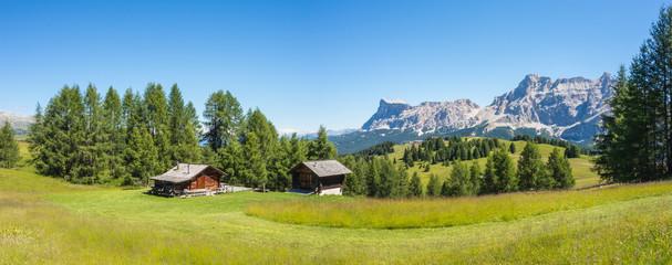 Foto op Plexiglas Heuvel Meadows at high altitudes forming gentle hills. Dolomites, Alta Badia, Sud Tirol, Italy