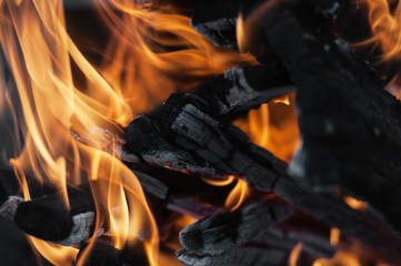 Warm fireplace. Fire, process of burning of a tree