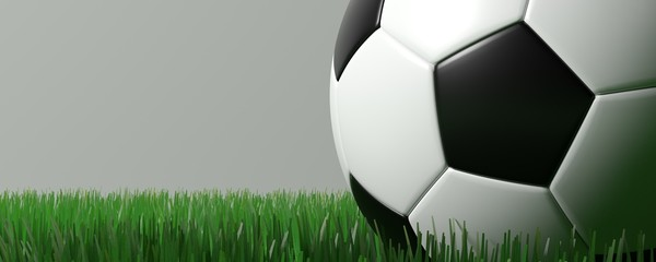 soccer ball on grass on gray isolate background