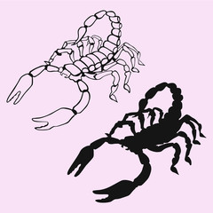 Scorpion silhouette vector isolated