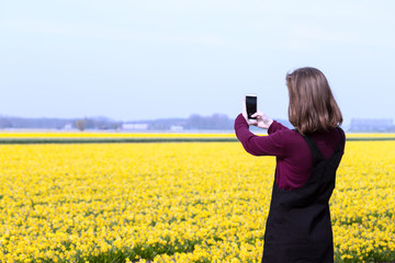 Girl takes pictures of a yellow daffodils on a smartphone