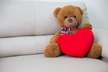 Teddy Bear sitting on the sofa.