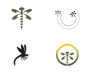 Dragon fly loogo vector template