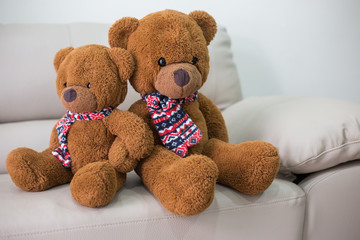 Teddy Bear sitting on the sofa.