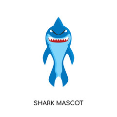 shark mascot logo isolated on white background , colorful vector icon, brand sign & symbol for your business