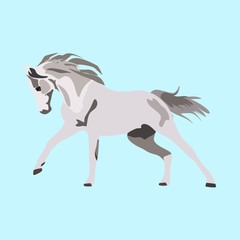 icons about Animal with shadow, stallion, horseback, mustang and year