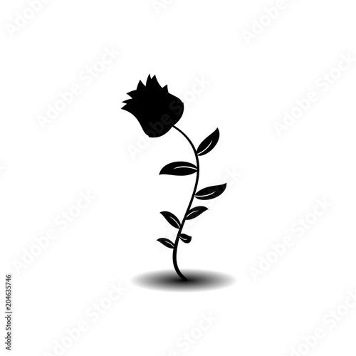 Download 51+ Background Black Rose HD Paling Keren