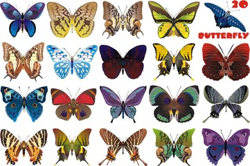 Butterflies in vector-set on transparent background