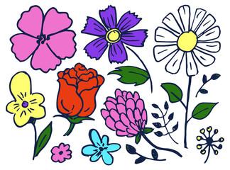 Flowers Hand Drawn Element Set Vector Illustration