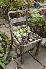 Bepflanzter alter Stuhl
