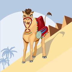 proud camel caravan of the desert vector illustration