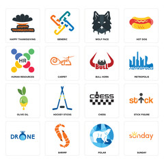 Set of sunday, polar, , chess, olive oil, bull horn, human resources, wolf face, happy thanksgiving icons