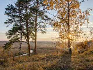 Beautiful Autumn Forest Landscape At Sunset Of The Day. View Of The River From The Slope. HDR.