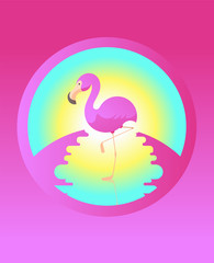 Summer vector illustration with flamingo