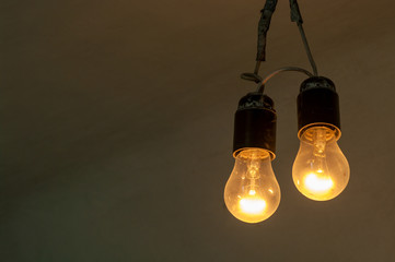 Two dimly luminous retro style light bulbs. Closeup. Copy space.