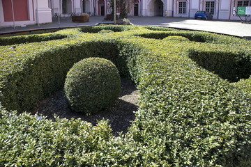 decoration in the form of a cross and balls in it from boxwood in the courtyard of the church