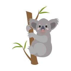 Cute koala on white background.