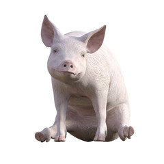 Cute Pink Piglet isolated on white, 3d render.