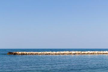 Along the sea