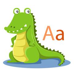 A alphabet vector animal for kid
