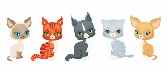 Vector image of a cute purebred kittens in cartoon style. Colorful illustrations isolated on a white background. Set.