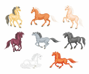 The realistic images of a beautiful horses on a white background. Vector illustration set.