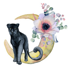Watercolor composition with black wiled panther and flowers peonies , anemone in a shape of moon