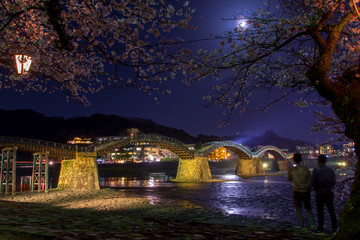 錦帯橋と夜桜/山口県岩国市