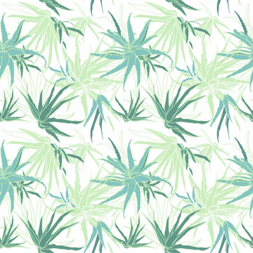 Seamless pattern with aloe vera tropical plant. Vector illustration