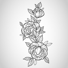 Flowers drawing and sketch with line-art