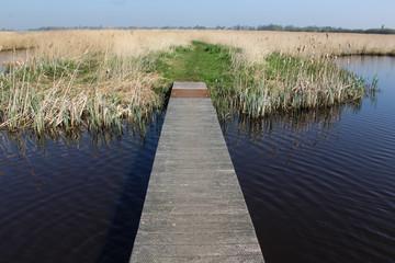 Landscape swamp and lake, Nieuwkoopse Plassen, in the Netherlands, during spirng